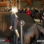 motorex_2011_160