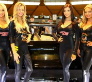 girls_of_motorex_2015_01_feature